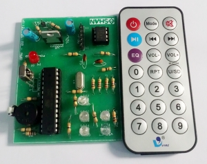 Remote Control Timer and Switch Module